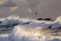 Θύελλα θάλασσας με τα μεγάλα σπάζοντας κύματα Στοκ Εικόνα