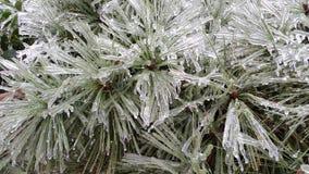 Θύελλα πάγου στοκ εικόνες με δικαίωμα ελεύθερης χρήσης