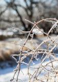 Θύελλα πάγου Στοκ εικόνα με δικαίωμα ελεύθερης χρήσης