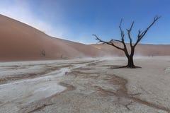 Θύελλα σκόνης σε Dooievlei Στοκ Εικόνες