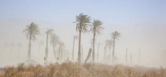 Θύελλα σκόνης Στοκ φωτογραφία με δικαίωμα ελεύθερης χρήσης