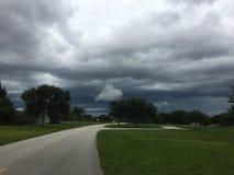 Θύελλα στο Everglades Στοκ Εικόνα