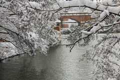 Θύελλα χιονιού στην πόλη στοκ εικόνα με δικαίωμα ελεύθερης χρήσης