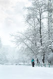 Θύελλα χιονιού στο ουκρανικό κεφάλαιο Στοκ Εικόνες