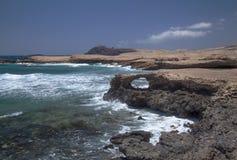 Θλγραν θλθαναρηα, Punta de Λα Sal Στοκ εικόνα με δικαίωμα ελεύθερης χρήσης