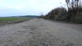 Θλιβερός δρόμος αμμοχάλικου Ο δρόμος κατά μήκος του τομέα απόθεμα βίντεο