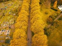 διάβαση πεζών πάρκων Στοκ Εικόνα