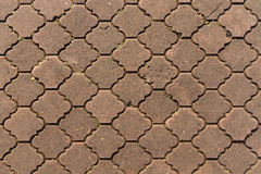 διάβαση πεζών τούβλου Στοκ Εικόνες