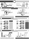 Διάγραμμα στοιχείων Infographic και γραφικός Στοκ Φωτογραφίες