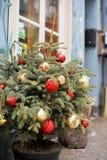 διάνυσμα δέντρων απεικόνισης χαιρετισμού Χριστουγέννων eps10 καρτών Στοκ φωτογραφίες με δικαίωμα ελεύθερης χρήσης