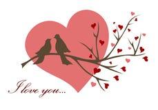 διάνυσμα αγάπης απεικόνισης πουλιών ελεύθερη απεικόνιση δικαιώματος