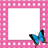 διάνυσμα απεικόνισης πλαισίων πεταλούδων Στοκ φωτογραφία με δικαίωμα ελεύθερης χρήσης