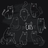 διάνυσμα απεικόνισης συλλογής γατών Στοκ Εικόνες