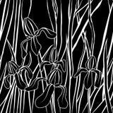 διάνυσμα Γραφική τυποποιημένη εικόνα του λουλουδιού ίριδων Απεικόνιση με Ατελείωτη μοντέρνη σύσταση Πρότυπο για το κλωστοϋφαντουρ Στοκ Εικόνα