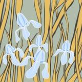 διάνυσμα Γραφική τυποποιημένη εικόνα του λουλουδιού ίριδων Απεικόνιση με Ατελείωτη μοντέρνη σύσταση Πρότυπο για το κλωστοϋφαντουρ Στοκ φωτογραφία με δικαίωμα ελεύθερης χρήσης
