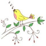διάνυσμα κειμένων τραγουδιού θέσεων απεικόνισης χαιρετισμού καρτών πουλιών σας Στοκ Φωτογραφίες