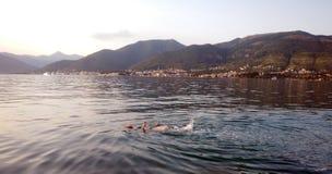 διάνυσμα κολύμβησης θάλασσας απεικόνισης κοριτσιών Στοκ εικόνα με δικαίωμα ελεύθερης χρήσης