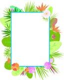 διάνυσμα προτύπων απεικόνισης λουλουδιών χρωμάτων Στοκ εικόνες με δικαίωμα ελεύθερης χρήσης