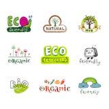 διάνυσμα στοιχείων eco σχε&delt Στοκ Εικόνες