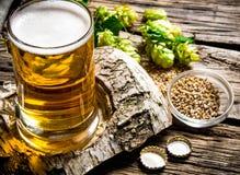 διάνυσμα συμβόλων απεικόνισης γυαλιών σχεδίου χρώματος μπύρας Στοκ φωτογραφίες με δικαίωμα ελεύθερης χρήσης