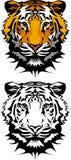διάνυσμα τιγρών μασκότ λο&gamma Στοκ φωτογραφίες με δικαίωμα ελεύθερης χρήσης