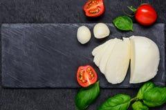 Διάστημα τυριών και αντιγράφων μοτσαρελών Στοκ Εικόνες