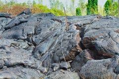 διαθέσιμο άνευ ραφής διανυσματικό άσπρο καλώδιο φραγών ανασκόπησης Στοκ Εικόνα