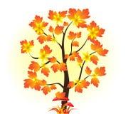 διαθέσιμο διάνυσμα δέντρων απεικόνισης φθινοπώρου Φθινόπωρο Μανιτάρια απεικόνιση αποθεμάτων