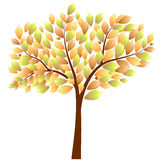 διαθέσιμο διάνυσμα δέντρων απεικόνισης φθινοπώρου Στοκ Εικόνες
