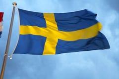 διαθέσιμο διάνυσμα της Σουηδίας ύφους γυαλιού σημαιών στοκ εικόνες