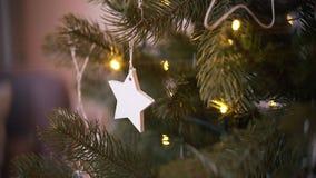 διακοσμημένο Χριστούγεν& δάσος δέντρων αστεριών διακοσμήσεων Χριστουγέννων απόθεμα βίντεο