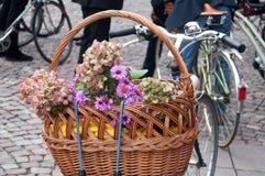 διακοσμητικά λουλούδια Στοκ Φωτογραφίες