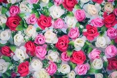 διακοσμητικά λουλούδια Στοκ Εικόνες