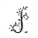 διακοσμητικό δέντρο Στοκ Φωτογραφίες