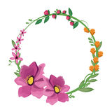 διακόσμηση κορωνών anemone λουλουδιών απεικόνιση αποθεμάτων