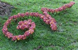 διακόσμηση λουλουδιών στο ναυπηγείο χορτοταπήτων για το παραδοσιακό ταϊλανδικό αλφάβητο num Στοκ φωτογραφίες με δικαίωμα ελεύθερης χρήσης