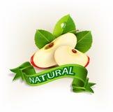 Διανυσματικές δύο φέτες του κόκκινου μήλου με τα πράσινα φύλλα Στοκ Εικόνες