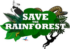 Διανυσματική απεικόνιση με τα ζώα τροπικών δασών ζουγκλών Στοκ Εικόνες