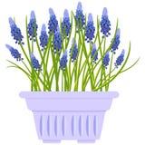 Διανυσματική απεικόνιση με το δοχείο λουλουδιών στο επίπεδο ύφος Στοκ Φωτογραφίες