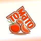 Διανυσματική απεικόνιση στο θέμα της ντομάτας Στοκ Εικόνα
