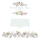 Διανυσματική απεικόνιση του ζωηρόχρωμου συνόλου λουλουδιών τριαντάφυλλων και χορταριών ι Στοκ Εικόνα