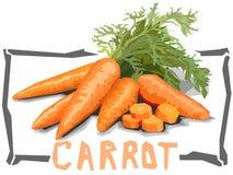 Διανυσματική απλή απεικόνιση των καρότων Στοκ Εικόνα