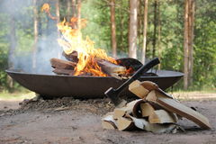 διανυσματική γυναίκα προετοιμασιών κουζινών απεικόνισης τροφίμων Στοκ Φωτογραφία