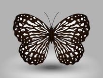 Διανυσματική πεταλούδα Στοκ φωτογραφία με δικαίωμα ελεύθερης χρήσης