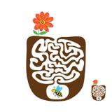 Διανυσματικός λαβύρινθος, λαβύρινθος με την πετώντας μέλισσα και λουλούδι Στοκ εικόνα με δικαίωμα ελεύθερης χρήσης