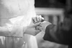 διανυσματικός γάμος απεικόνισης νεόνυμφων νυφών Στοκ φωτογραφία με δικαίωμα ελεύθερης χρήσης