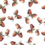 Διανυσματικό άνευ ραφής σχέδιο βελανιδιών watercolor Στοκ Φωτογραφίες
