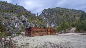 διανυσματικό δάσος σανίδων ανασκόπησης Στοκ Εικόνα