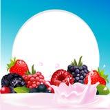 Διανυσματικό πλαίσιο με τα άγριους φρούτα μούρων και τον παφλασμό γάλακτος Στοκ Εικόνες