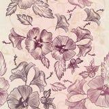 Διανυσματικό σχέδιο ταπετσαριών με hibiscus τα λουλούδια Στοκ Εικόνα